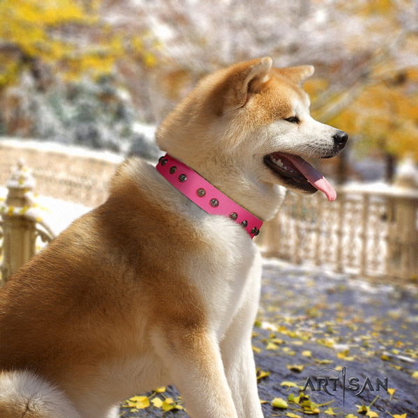 Akita Inu leather dog collar with unique decorations