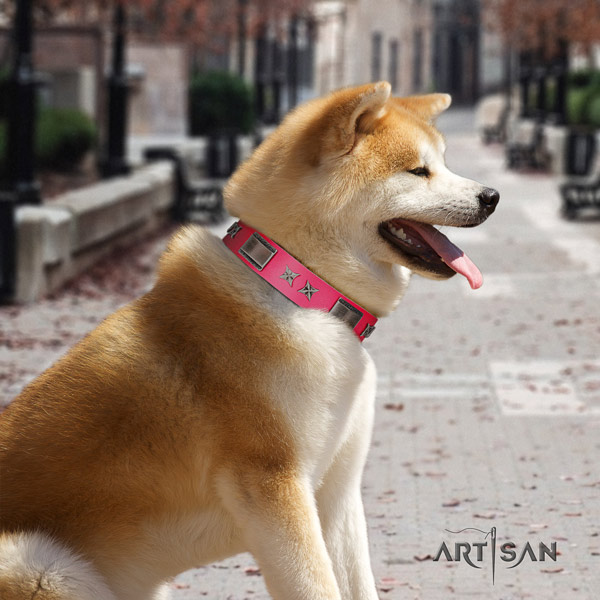Akita Inu studded leather dog collar with trendy adornments