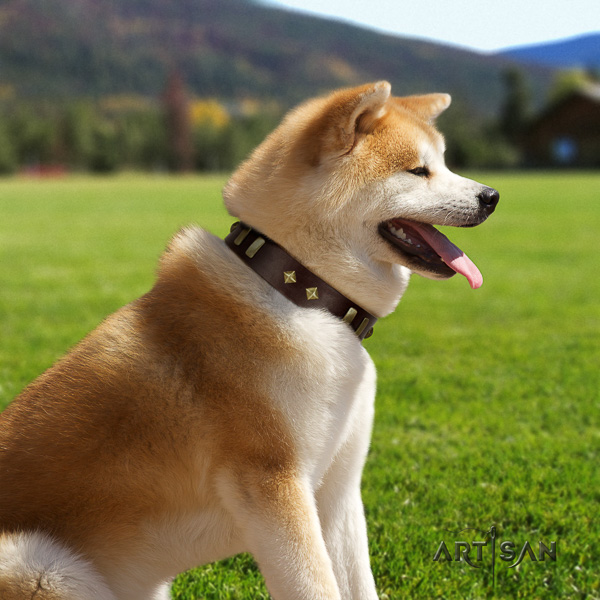Akita Inu fancy walking full grain genuine leather collar with embellishments for your canine