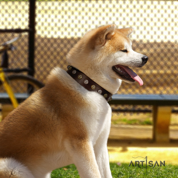 Akita Inu handy use natural leather collar with embellishments for your canine