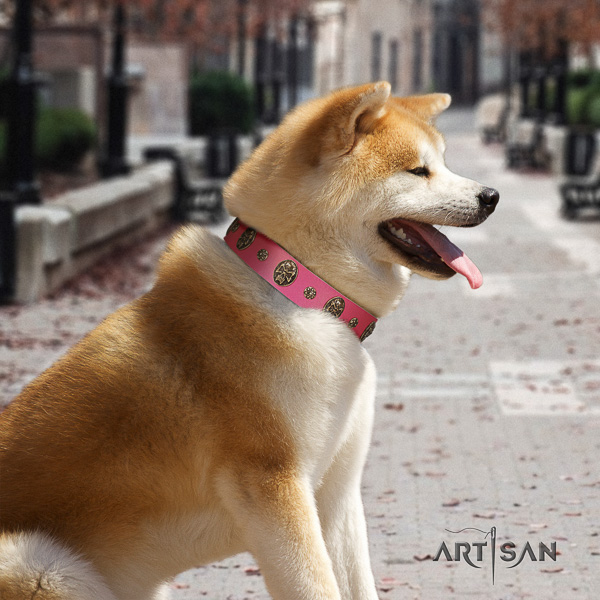 Akita Inu easy wearing full grain leather collar with adornments for your canine