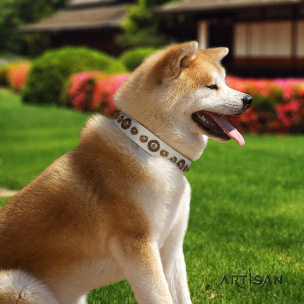Akita Inu genuine leather dog collar with amazing embellishments