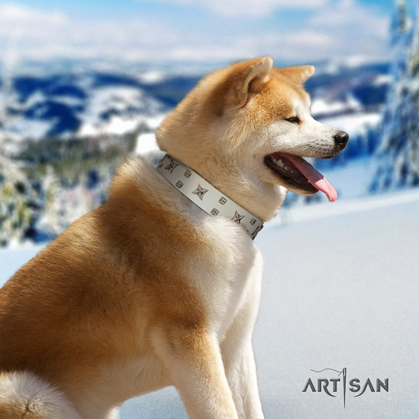 Akita Inu everyday walking natural leather collar with studs for your canine