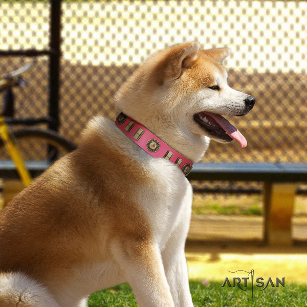 Akita Inu everyday use natural leather collar with decorations for your four-legged friend
