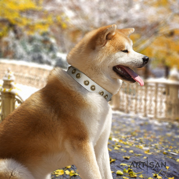 Akita Inu walking leather collar with adornments for your pet