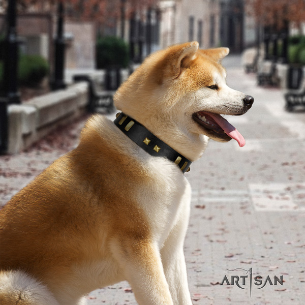 Akita Inu walking full grain natural leather collar with adornments for your dog