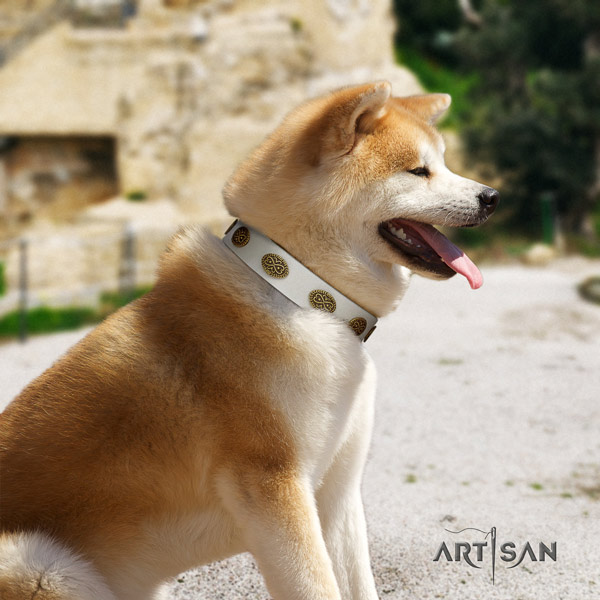 Akita Inu leather dog collar with amazing adornments