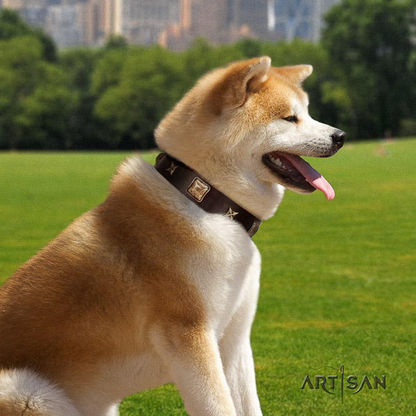 Akita Inu easy wearing full grain genuine leather collar with embellishments for your pet
