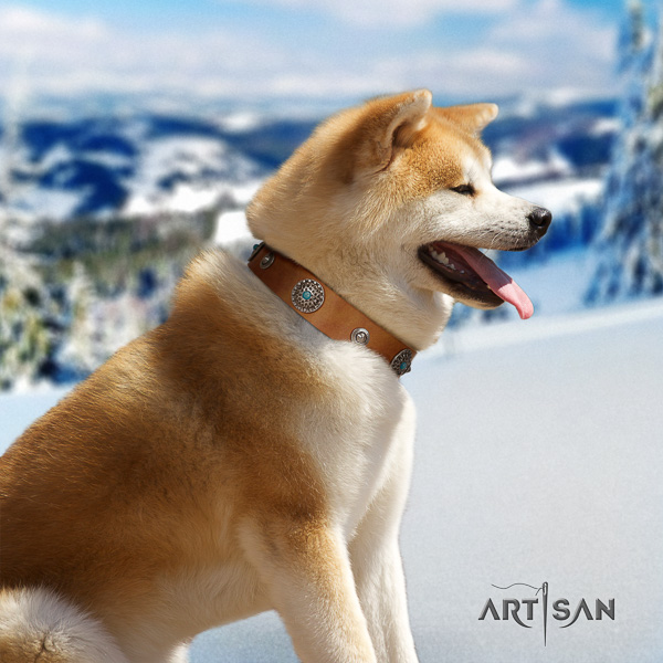 Akita Inu everyday use full grain natural leather collar with studs for your dog