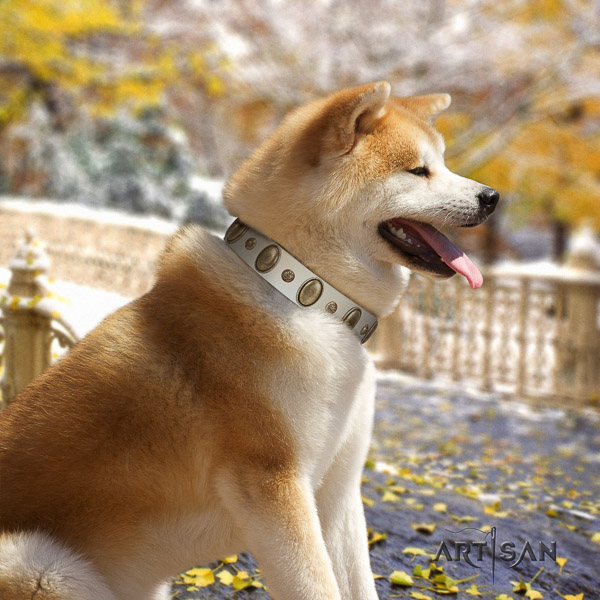Akita Inu easy wearing genuine leather collar with decorations for your pet