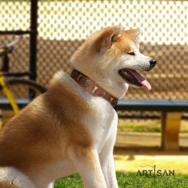 Akita Inu walking full grain natural leather collar with studs for your pet