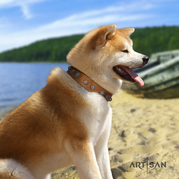 Akita Inu handy use full grain genuine leather collar with studs for your four-legged friend