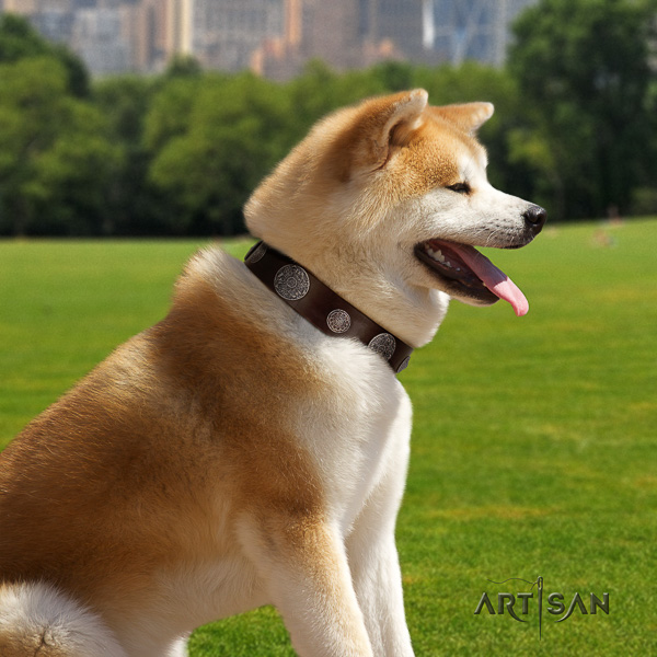 Akita Inu walking genuine leather collar with adornments for your dog