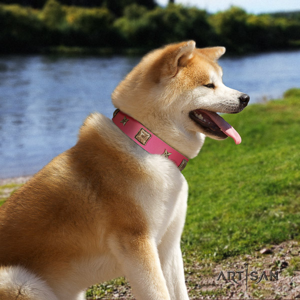 Akita Inu daily walking natural leather collar with decorations for your dog