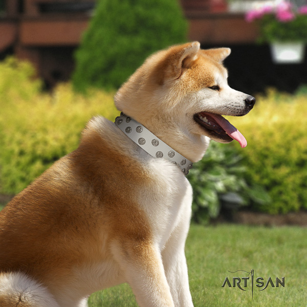 Akita Inu easy wearing leather collar with studs for your four-legged friend