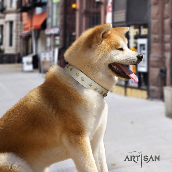 Akita Inu full grain leather dog collar with fashionable studs