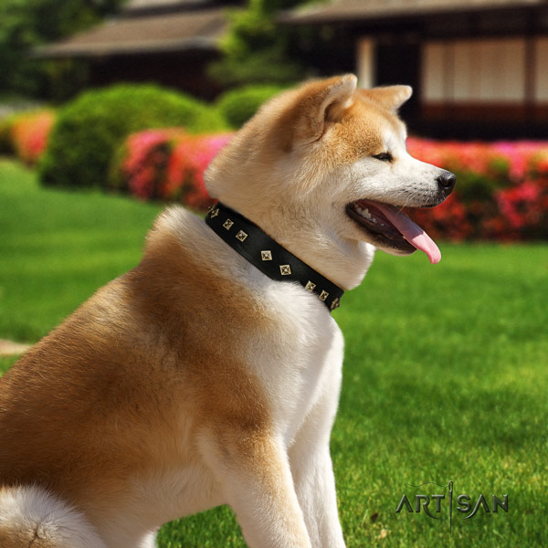 Akita Inu genuine leather dog collar with unique adornments