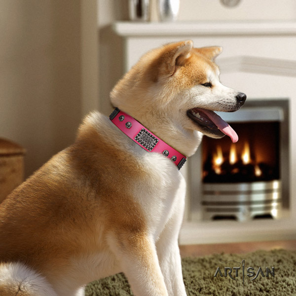 Akita Inu leather dog collar with top notch studs