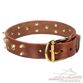 Full grain natural leather dog collar of tan color