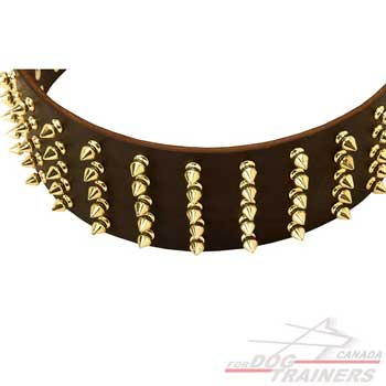 Brass spikes for leather collar