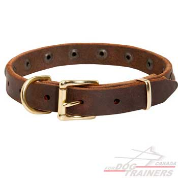 Leather Dog Collar Decorated for Fashion Walking