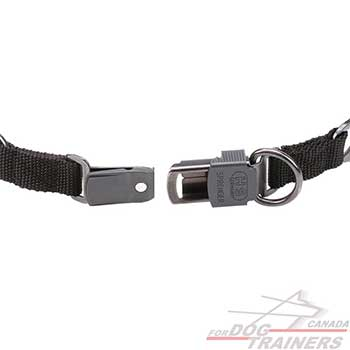 Click Lock Buckle of Black Stainless Steel Dog Pinch Collar