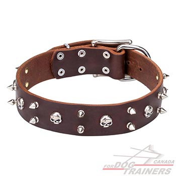 Full grain natural leather dog collar of brown color