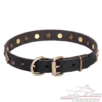 Leather Pet Collar with Bronze-plated Hardware