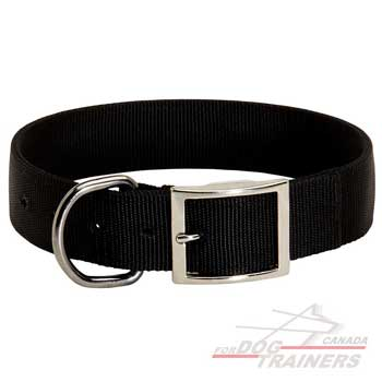 Dog Nylon Collar for Regular Walks