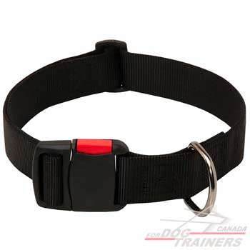 Dog Nylon Collar with D-ring for Fast Lead Attachment