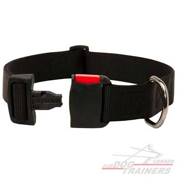 Nylon Dog Collar with Simple in Use Quick Release Buckle