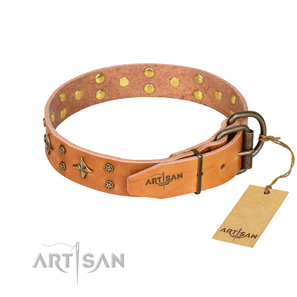 Everyday walking natural genuine leather collar with embellishments for your pet