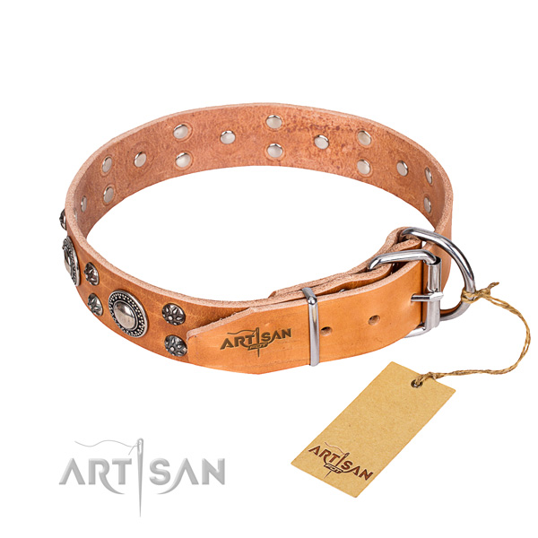 Walking leather collar with embellishments for your canine