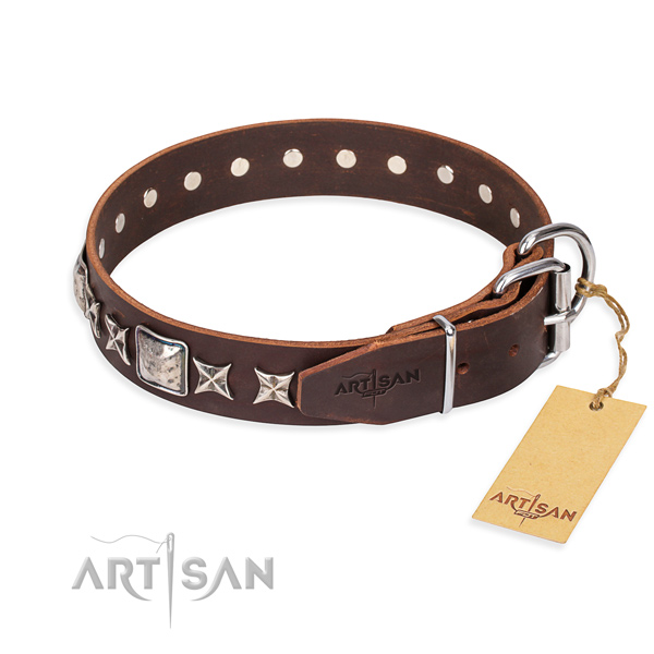 Daily use full grain natural leather collar with embellishments for your canine