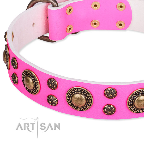 Natural genuine leather dog collar with unique studs
