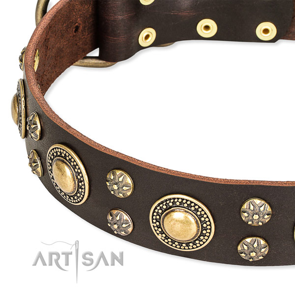 Leather dog collar with incredible decorations