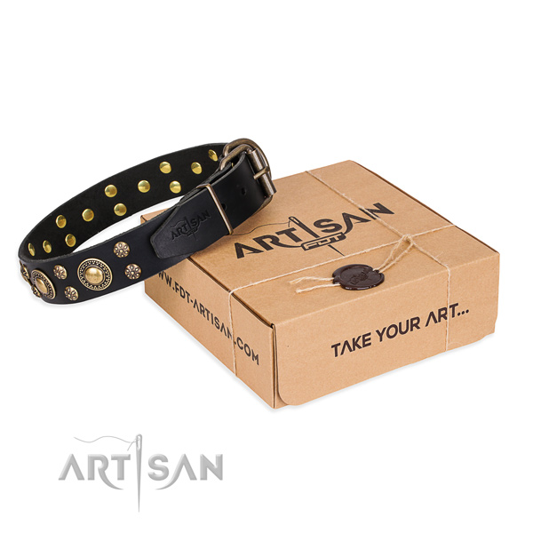 Top quality full grain leather dog collar for daily walking