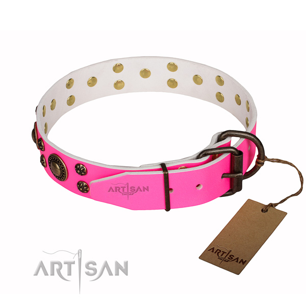 Amazing full grain leather dog collar for everyday use