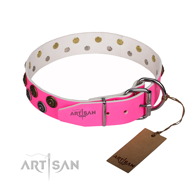 Amazing full grain natural leather dog collar for walking