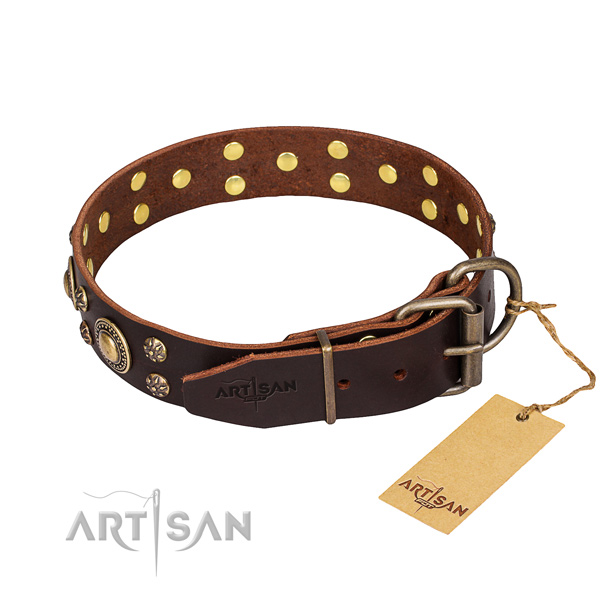 Walking genuine leather collar with adornments for your four-legged friend