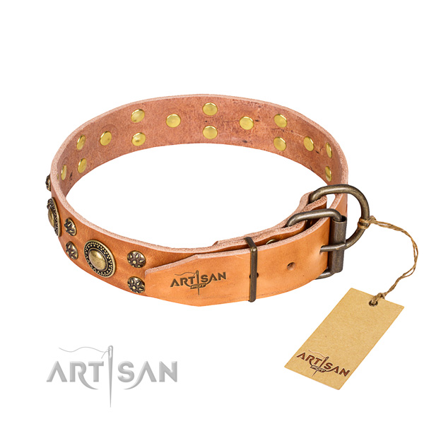 Everyday walking natural genuine leather collar with adornments for your dog