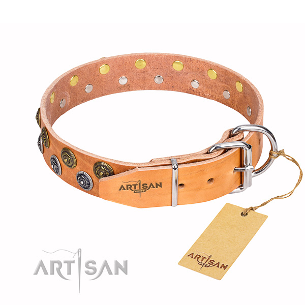 Walking natural genuine leather collar with adornments for your dog