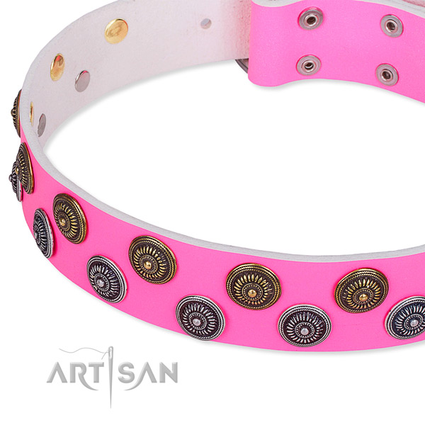 Full grain leather dog collar with trendy studs