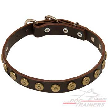 Leather dog collar narrow for comfort of your pet