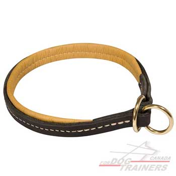 Leather dog collar with soft padding
