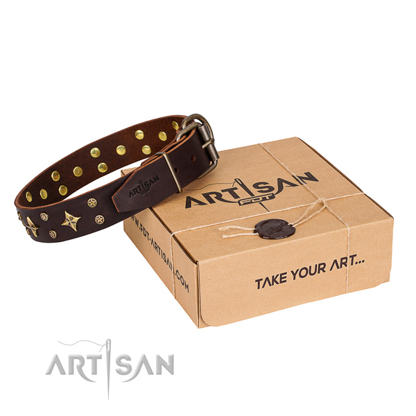 Embellished full grain genuine leather dog collar for everyday walking