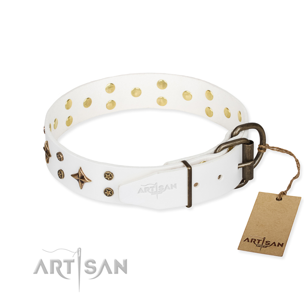 Stylish walking leather collar with adornments for your dog