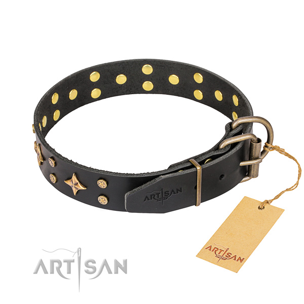Stylish walking leather collar with embellishments for your four-legged friend