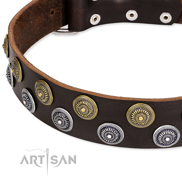 Genuine leather dog collar with unusual embellishments