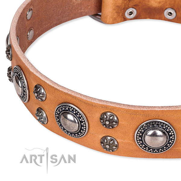 Handy use genuine leather collar with rust resistant buckle and D-ring
